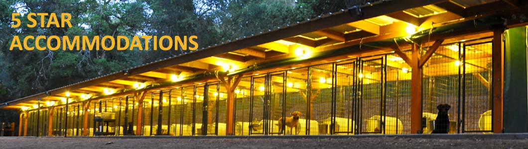 Raney Ranch Dog Boarding Kennels in San Diego, California